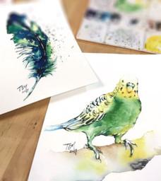 小清新繪畫, 羽毛和小鳥