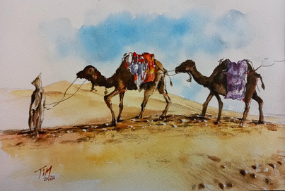 Plain air sketching in Morocco