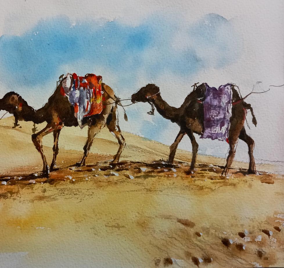 Morocco sahara camel Lam Kam Tim watercolor sketch tour