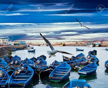blue-fishing-boats-on-an-ocean