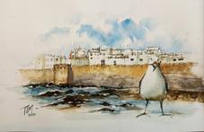 Morocco watercolor tour