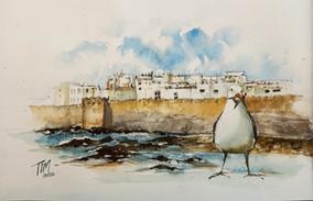 Tim sir sketchbook of Essaouira