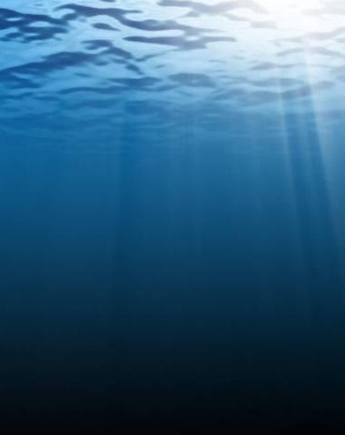 Deine wahre Natur ist wie der Ozean