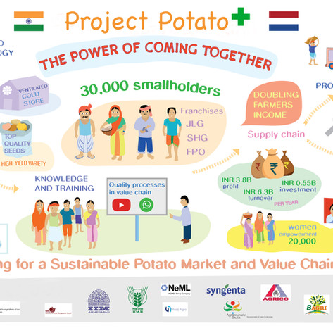 Project Potato Plus