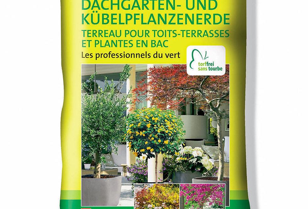 EGP Dachgarten-Kübelpflanzen