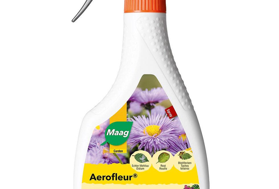 Aerofleur Spray gegen Pilzkrankheiten