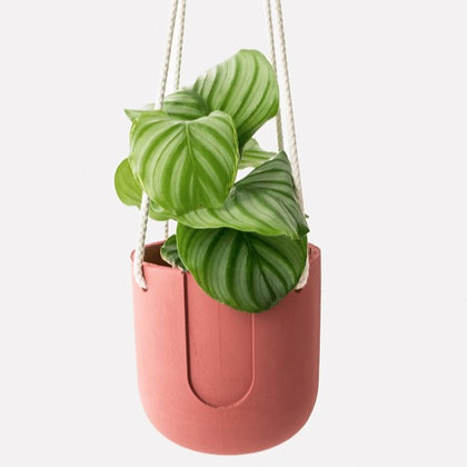 Nelson Hanging Planter 'House Raccoon' - Ø 15 cm