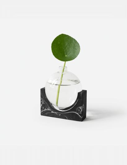 June_black-marble_plant-1182x1536.png