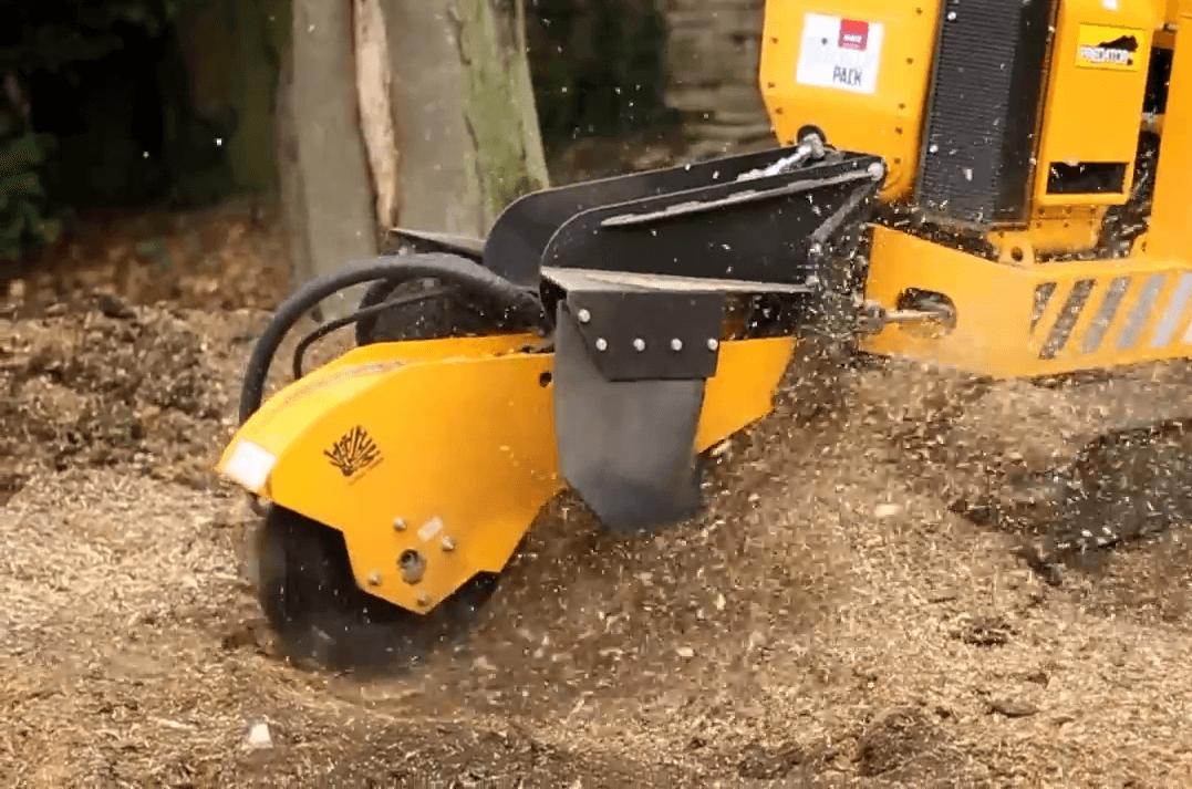 predator 50rx tree stump grinder grinding out tree stump
