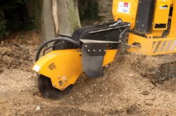 predator 50rx tree stump grinder grinding out tree stump