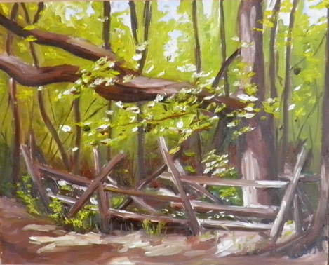 Kortright Conservation Area