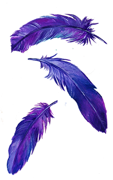 purple feathers.png