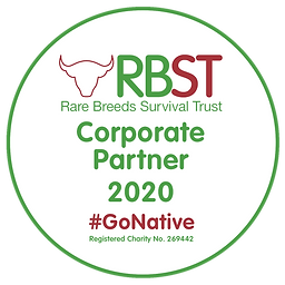 rbst logo.png
