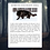Thumbnail: Shadow Animal Reading