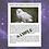 Thumbnail: Spirit Animal Retrieval - Two Animals