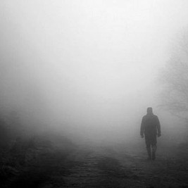 A Walk in the Moors