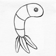 Shrimp Plush Cat Toy #3