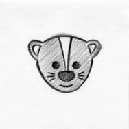 Skunk Face / Head Design