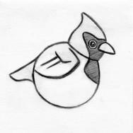 Cardinal Small Squeaker Disk Pet Toy