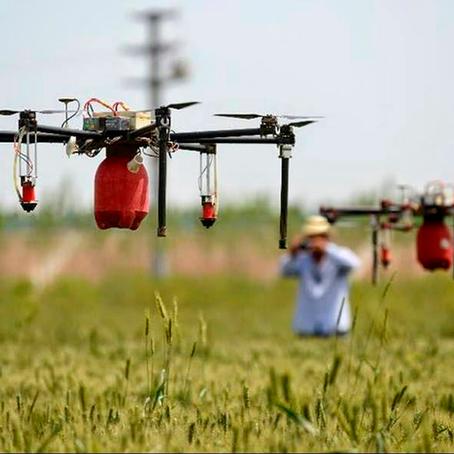 AGRICULTURA DE PRECISÃO: COMO OS DRONES ESTÃO MUDANDO A AGRICULTURA NO MUNDO