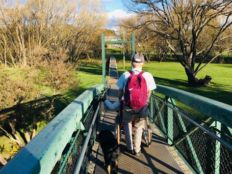 Deloraine Pedestrian Bridge