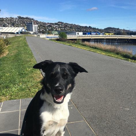 Esplanade Trail