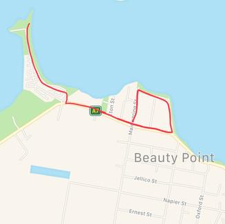 Walking Option 1
