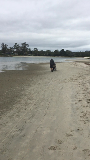 Orford Beach Run