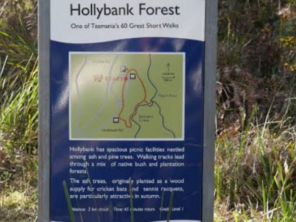 Hollybank Forest Trail Map