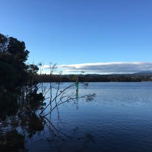 Wetlands River View