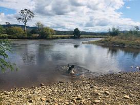 River Spot