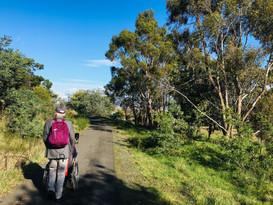Rocherlea Old Rail Trail