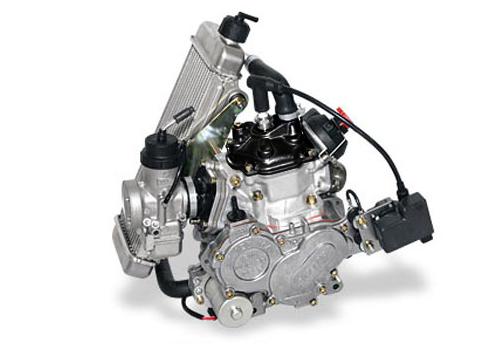 Moteur Rotax 125 MAX