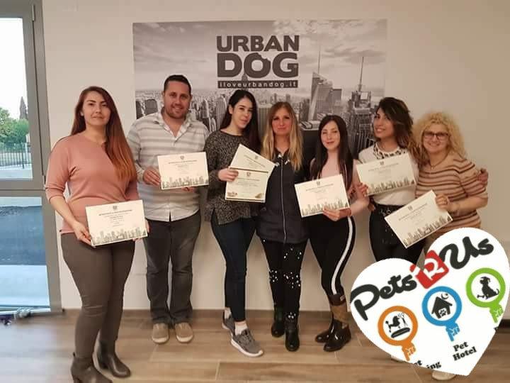 Pet Grooming - Urban Dog Certificate.