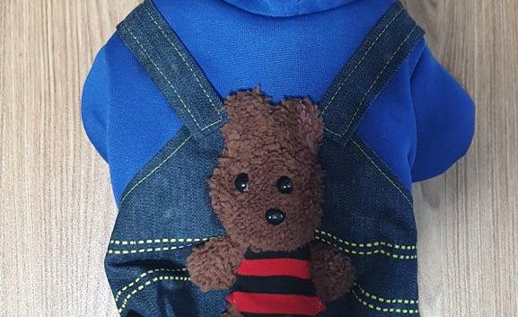 Teddy bear Winter Jackets