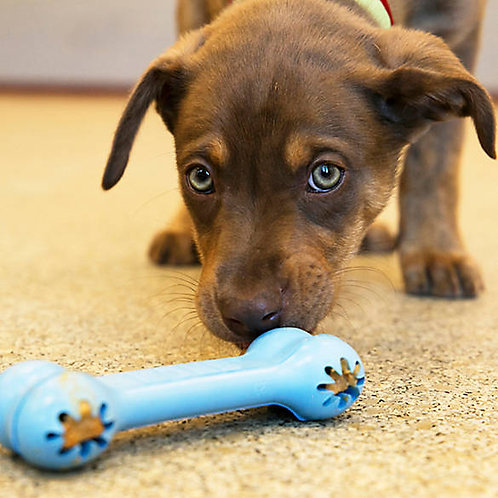 Kong Goodie Bone Puppy