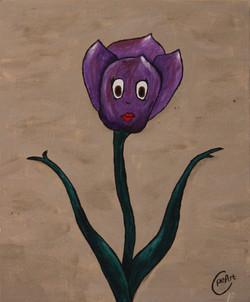 Tulip origional