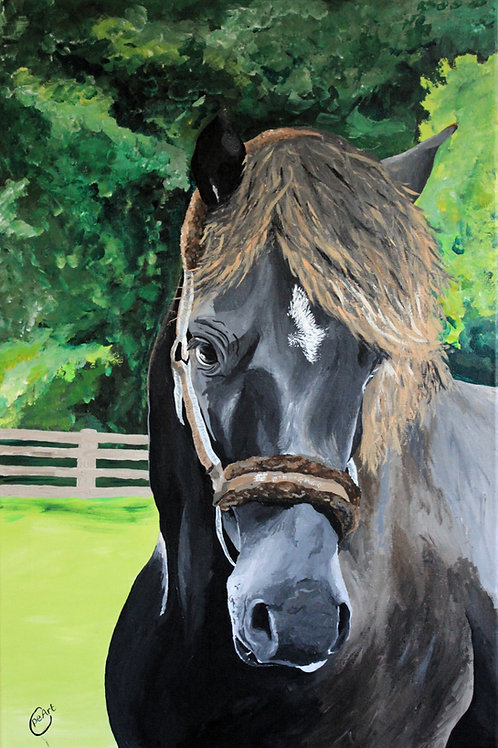 Rustler - Limited Edition Print