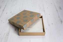 Packaging_Fine_Art_Album_002