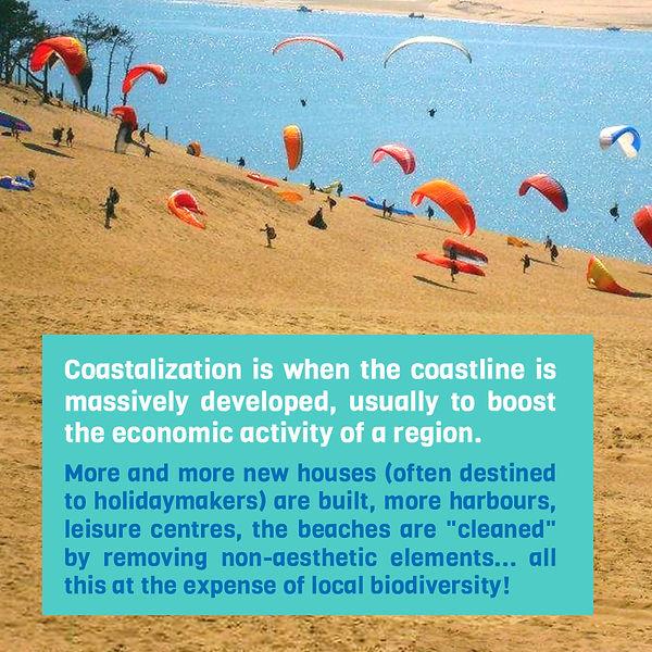 coastalization_en_03.jpg