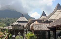 Village Stay