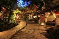 Rainforest Resorts