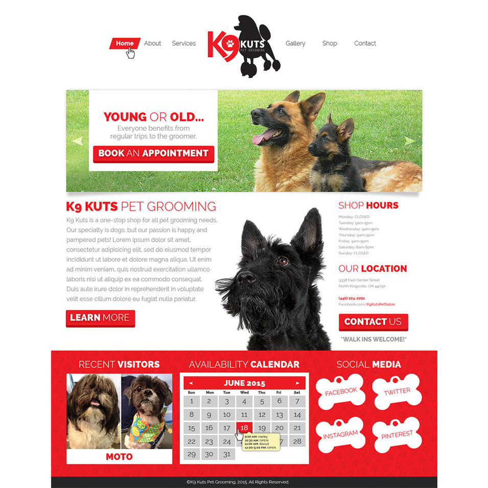K9 Kuts: Homepage Layout