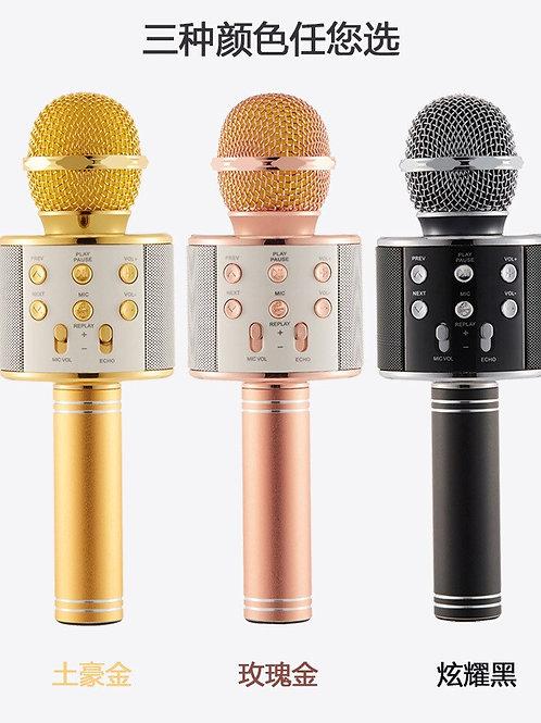 Professional Bluetooth Wireless Microphone Singing