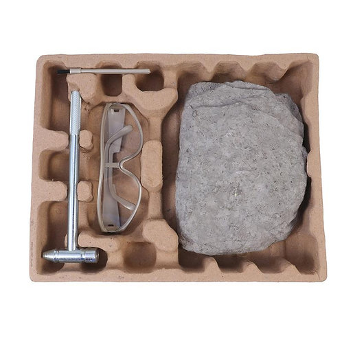 1 Set Science Education DIY Toys Dinosaur Archaeological Excavation