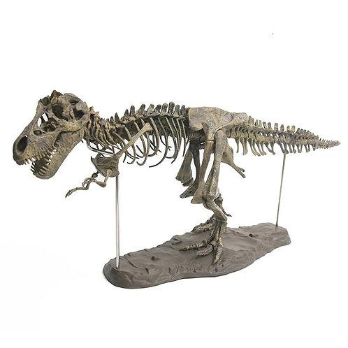 Simulation DIY 3D Dinosaur Model Skeleton