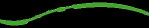 BD Gump Logo 6_3x.png