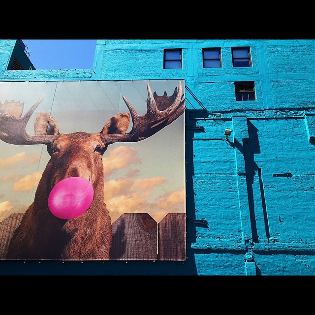 Blue building and a moose blowing bubbles in Chicago