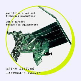 32F_Pisciculture_Landscape Fabric