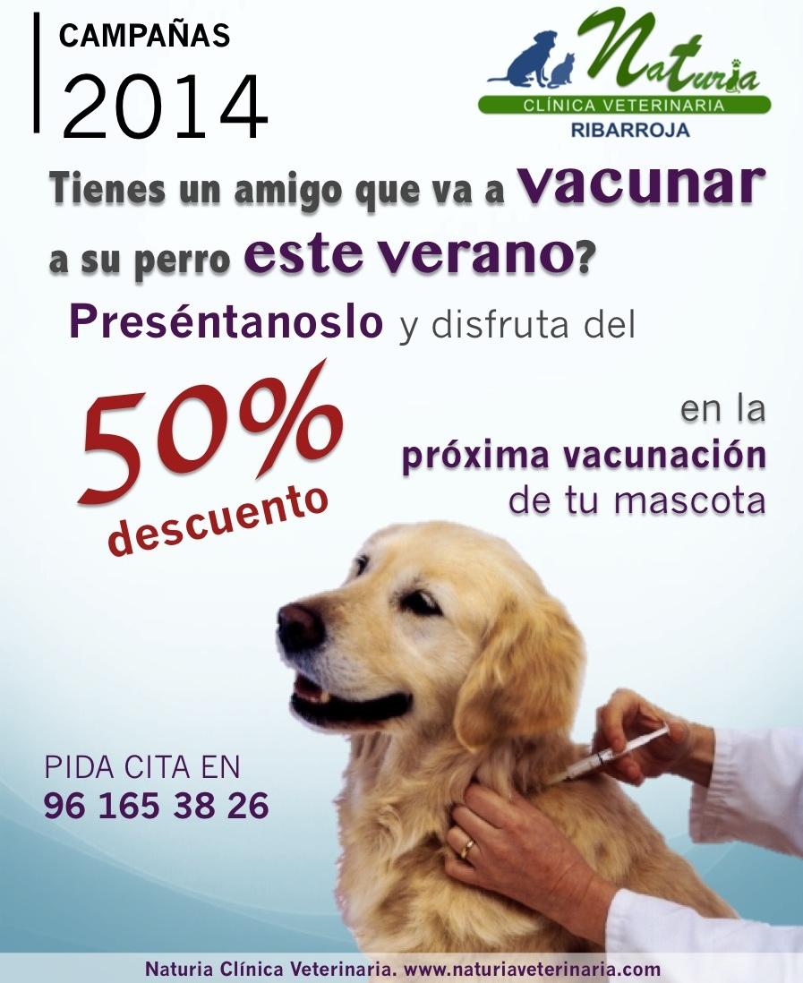 Vacunas 50%